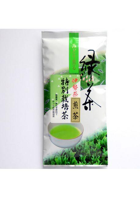 Sencha tea Isecha