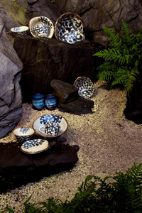 Zdjęcia galerii Nagomi